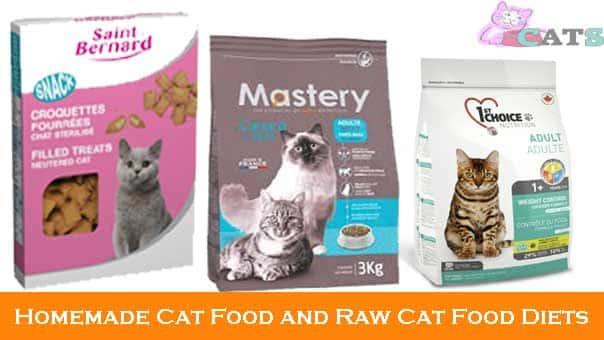 Comment faire des croquettes chat plus appétissant?