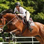 Pourquoi est-il important de bien s'équiper pour l'équitation